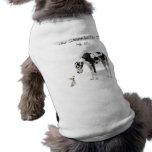 Deutsche Dogge und Chihuahua klein, Sie gehend zum Haustierhemd