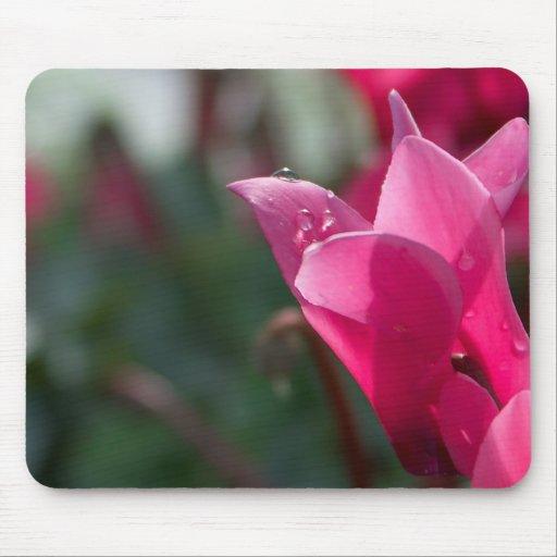 Dewdrops auf Blume Mousepad