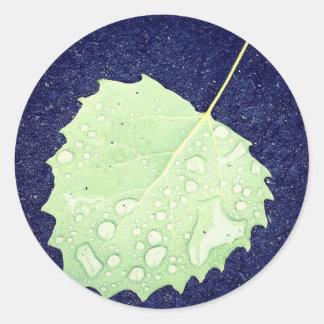 Dewy Blatt-klassische Runde Sticker-3 herein. Runder Aufkleber