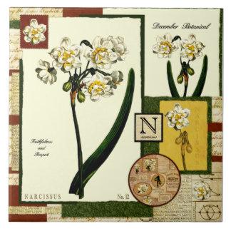 Dezembers Blume Große Quadratische Fliese