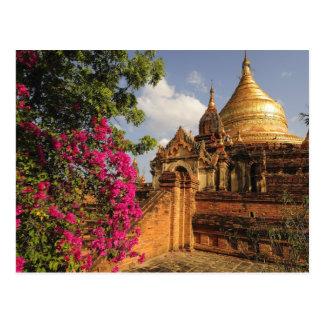 Dhamma Yazaka Pagode bei Bagan (Heide), Myanmar Postkarte