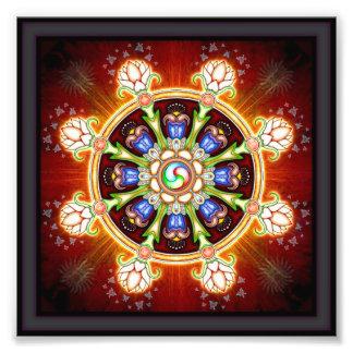 Dharma - Rad Fotos