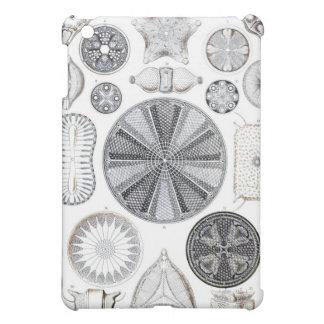 Diatomee ipad Fall iPad Mini Schale