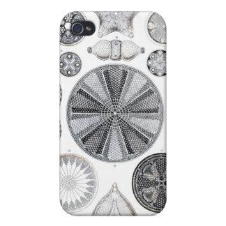 Diatomee iphone 4 Fall Hülle Fürs iPhone 4