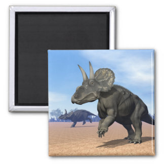 Diceratops/nedoceratops Dinosaurier in der Wüste Quadratischer Magnet
