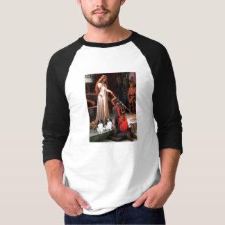 Die Akkolade - zwei japanische Kinne (2BW) T-Shirt
