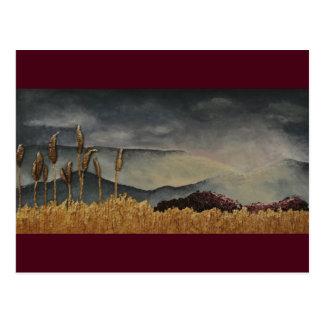 Die Ansicht vom Feld durch Alison Galvan Postkarte