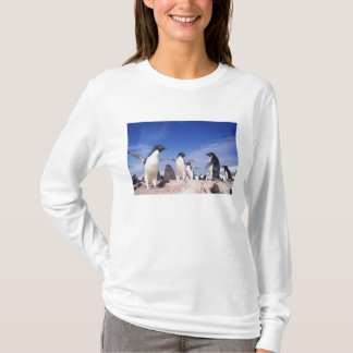 Die Antarktis, Adelie-PinguinPygoscelis T-Shirt