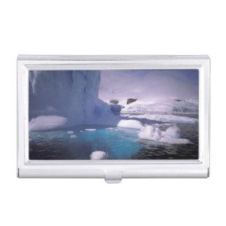 Die Antarktis. Antarktische icescapes 2 Visitenkarten Dose