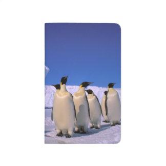 Die Antarktis, australisches antarktisches Gebiet, Taschennotizbuch
