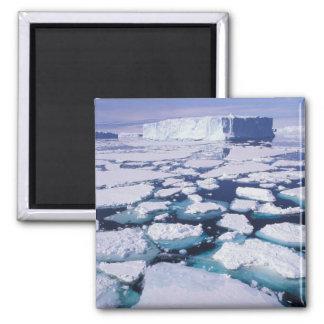 Die Antarktis, Eisfluß Quadratischer Magnet