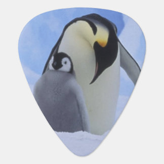 Die Antarktis. Kaiser-Pinguine und -küken Plektron