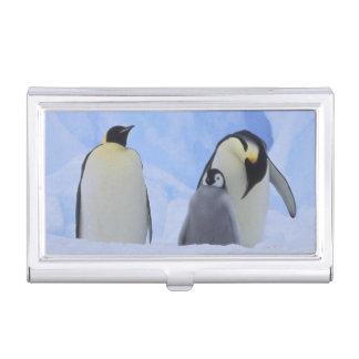 Die Antarktis. Kaiser-Pinguine und -küken Visitenkarten Dose