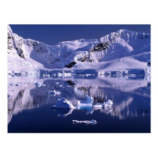 Die Antarktis, Paradies-Bucht Postkarte