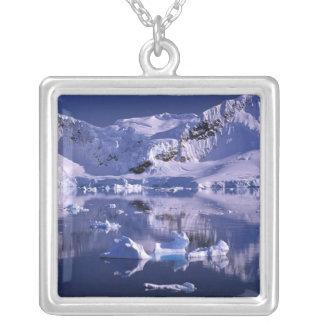 Die Antarktis, Paradies-Bucht Versilberte Kette