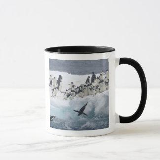 Die Antarktis, Paulet Insel. Adelie-Pinguine Tasse
