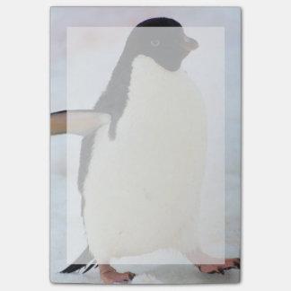 Die Antarktis. Petermann Insel. Adelie-Pinguin Post-it Klebezettel
