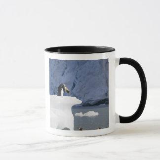 Die Antarktis, Südgeorgia-Insel (Großbritannien), Tasse