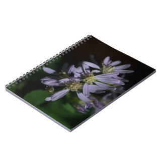 Die Aster-lila Herbst-Wildblume-Notizbuch des Spiral Notizblock