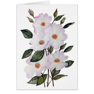 """Die Ballerina-"""" Blumenkunst der Rosen Karte"""