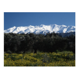 Die Berge von Kreta Postkarte