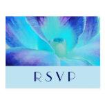 Die blaue Orchidee UAWG Postkarte