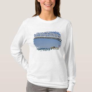Die blaues Wasser-Brücke ist eine Doppel-spanne T-Shirt