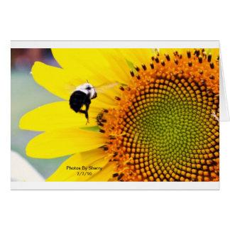 Die Blumen-Garten-Reihe des Sherrys Karte