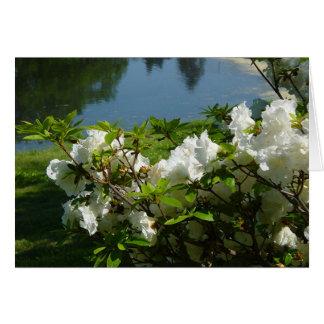 Die Blumen von Dekan Park Karte
