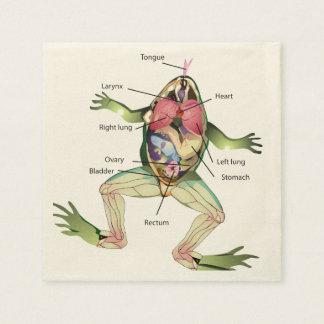 Die Die Anatomie-Illustration des Frosches Servietten