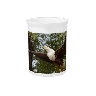 Die Eagle-Fliegen Tom Wurl Getränke Pitcher