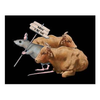 Die Einschüchterung ist NICHT cool! Grafik: Maus, Postkarte