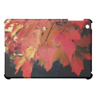 Die Farbe des Fall-Fotografie-Kunst-Speck-Kastens iPad Mini Hülle
