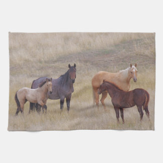 Die Farben des Reihe-PferdeGeschirrtuchs Geschirrtuch