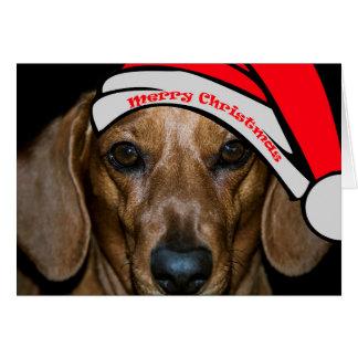 Die frohen Weihnacht-Karte des Dachsunds Karte