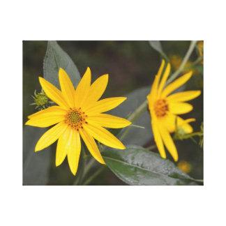 Die gelben Wildblumen der Natur Leinwanddruck
