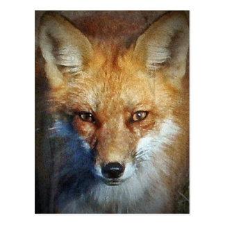 Die Geschenke u. Grüße roten Fox Postkarte