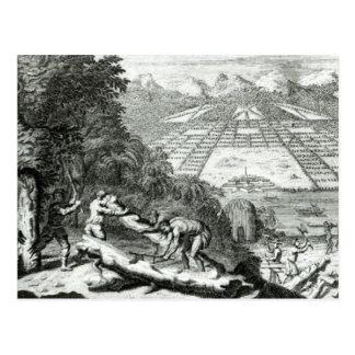 Die Gründe für die Bildung der Kolonie von Postkarte