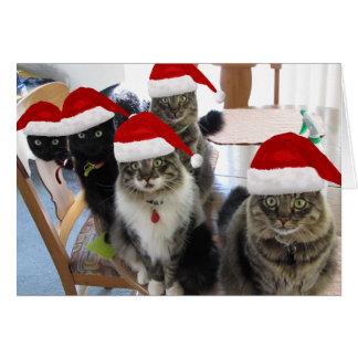 Die Gruppen-Extramilch-Weihnachtskarte Karte