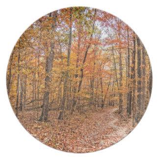 Die Herbst-Spur Melaminteller