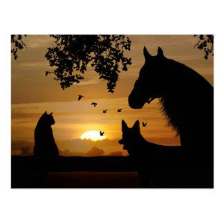 Die herrliche Postkarte eines Tierliebhabers