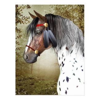 Die indische Pony-Postkarte Postkarte