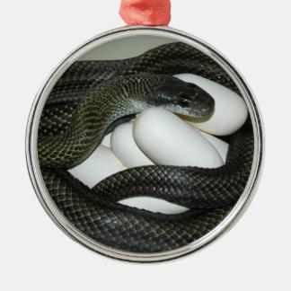 Die japanische Ratten-Schlange, schönes und Rundes Silberfarbenes Ornament