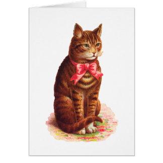 Die Katze, die an Sie denkt, kardieren - Karte