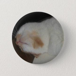 Die Katze Hector dieses dummen Amerikaners Runder Button 5,1 Cm