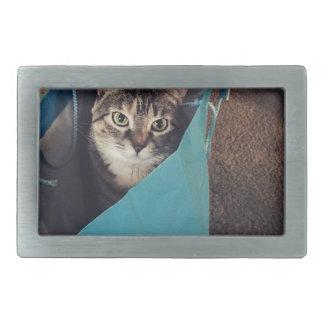 Die Katze ist bereit, aus die Tasche Rechteckige Gürtelschnalle