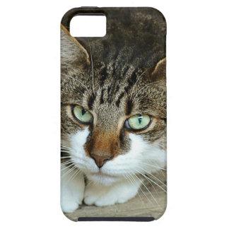 Die Katzenaugen Hülle Fürs iPhone 5