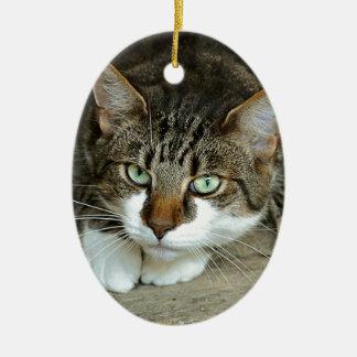 Die Katzenaugen Keramik Ornament