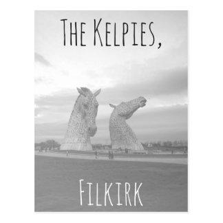 Die Kelpiespostkarte, hohe Pferdekopfskulpturen Postkarte