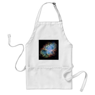 Die Krabben-Nebelfleck-Supernova NASA Schürze